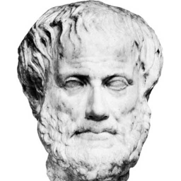 who is aristotle and what are his arguments on laws of motion Aristotle's law of motion: the natural state for an object is to be at rest  of the  reasons i suggest that we just stop using words like law in science)  let's write  down newton's second law in its common form as an equation.