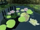 Lovely Pond 3D screensaver