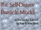 Self-Driven Particle Model