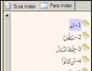 Sura Index and Para Index