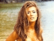 Carmen Electra Sex-E Screensaver